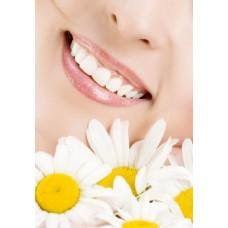 Полости рта