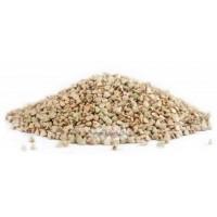 Гречка зеленая для проращивания весовая, Алтай, 0,5 кг