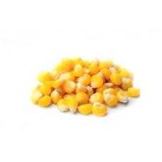 Зёрна кукурузы для проращивания, 0,5 кг